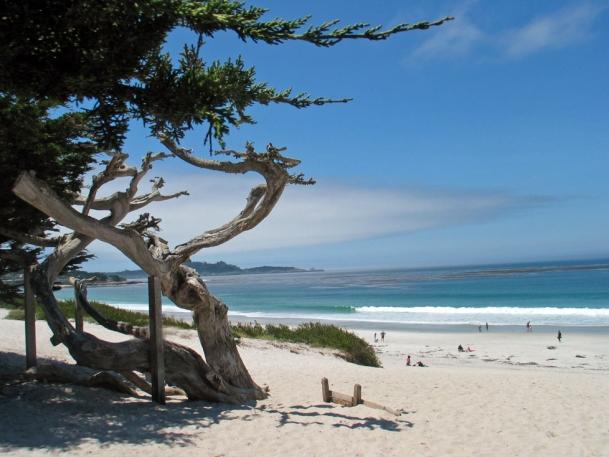 Carmel Beach, where I've taken so many walks.
