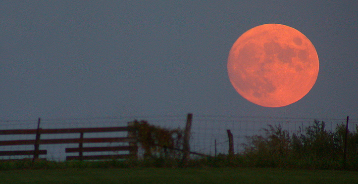 A harvest moon over Ontario.